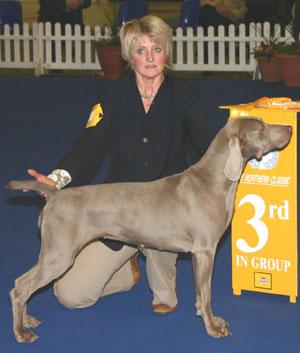 Higham Press Dog Show Results