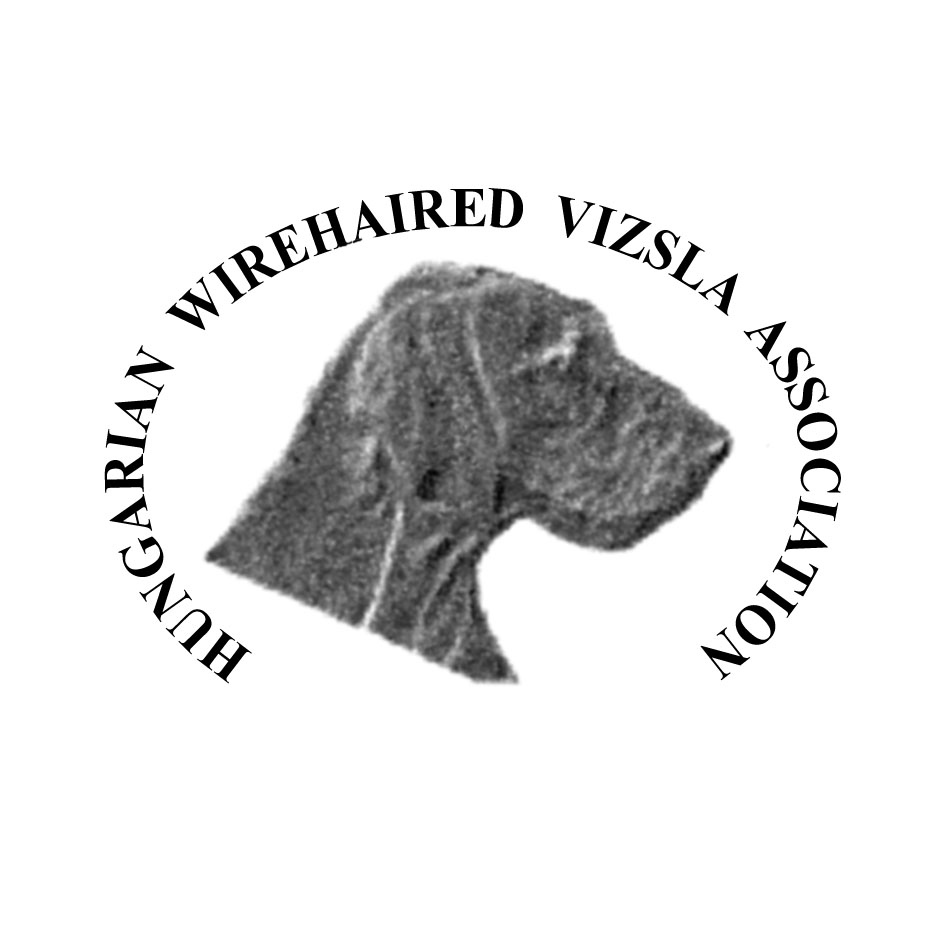 HUNGARIAN WIREHAIRED VIZSLA ASSOCIATION - Open